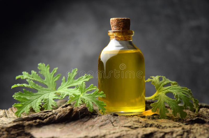 Geranium oil aromatherapy bio organic SPA royalty free stock photo