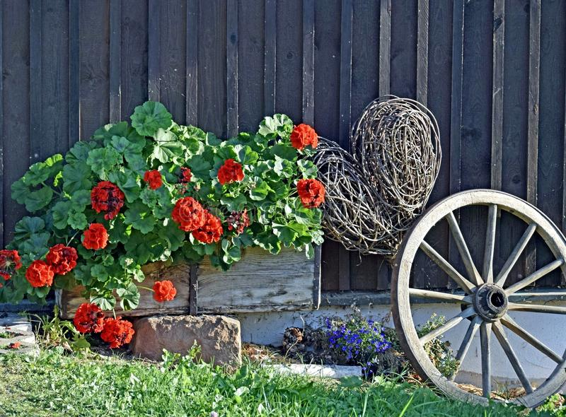 Geranium Willow heart front porch decoration. Front yard decoration consisting of a planter filled with Geraniums old wagon wheel and a willow heart wooden barn stock image