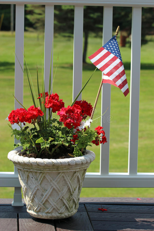 Geraniums and flag stock photography