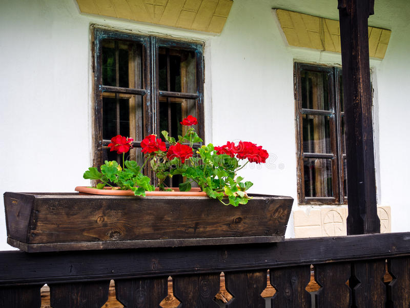 Geraniums in a wooden flower pot, traditional rural romanian house porch royalty free stock photo