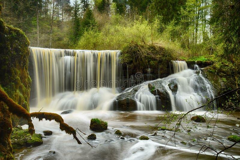 Geratser Wasserfälle στοκ εικόνα
