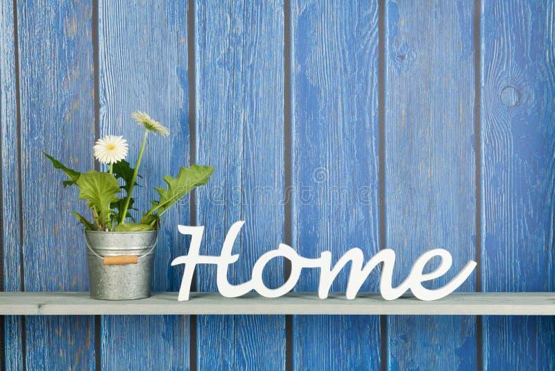 Gerber-Anlage mit weißen Blumen zu Hause lizenzfreie stockfotos