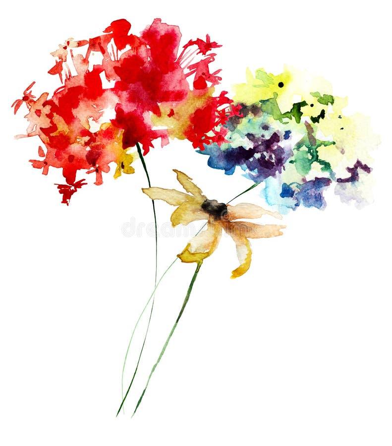 Gerber och vanlig hortensiablommor royaltyfri illustrationer