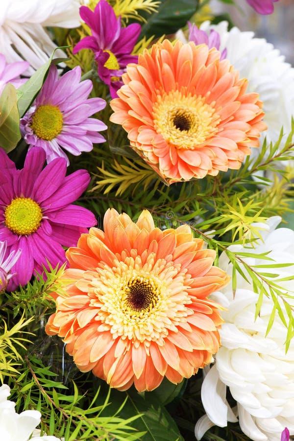 Gerbera και Daisy μια ανθοδέσμη των λουλουδιών στοκ εικόνες