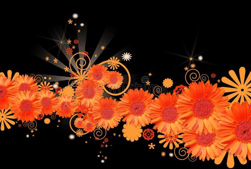 Gerbera daisy background vector illustration