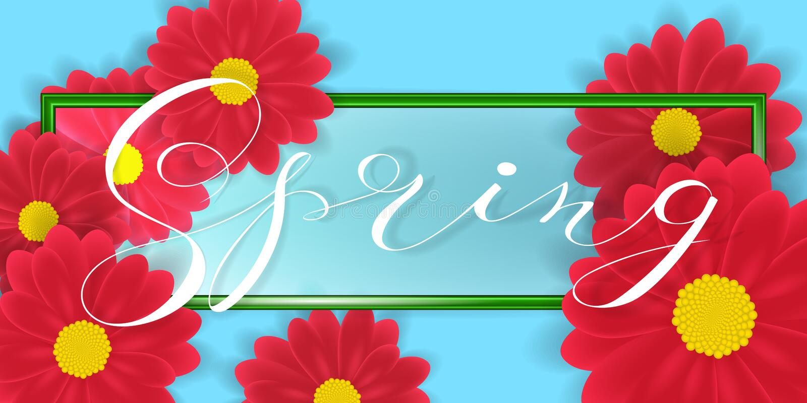 Gerbera or Daisy Flowers on white Background and Spring word Lettering in green border. Vector Illustration stock illustration