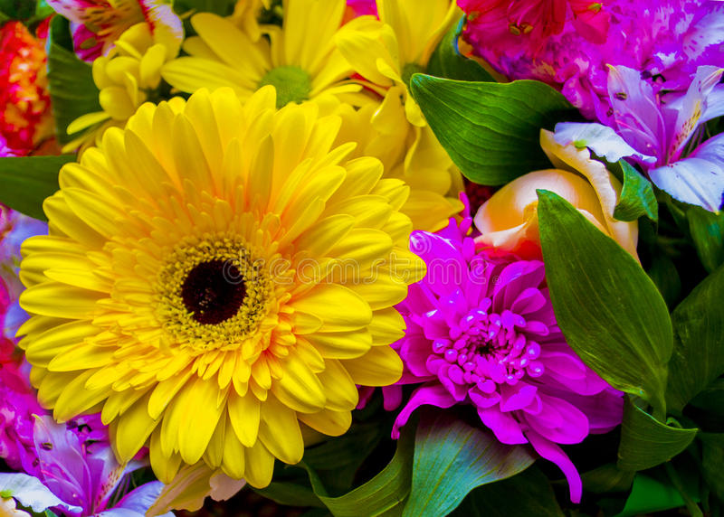 Gerbera le bouquet du gerbera de roses de fleurs fleurit des oeillets image libre de droits
