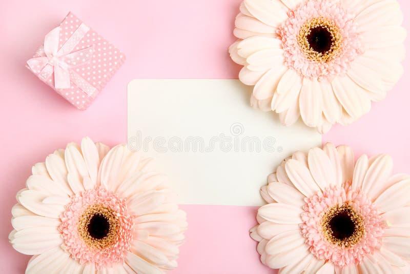 Gerbera rosado tres fotografía de archivo libre de regalías