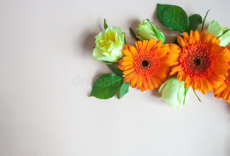 Gerberablommor och rosor royaltyfri fotografi