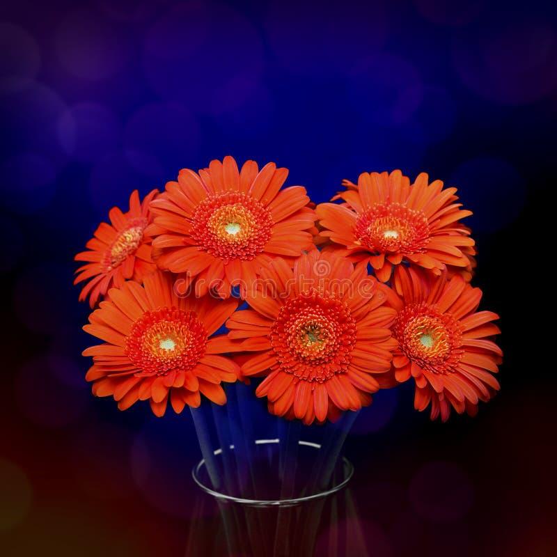 Free Gerberas In Vase Royalty Free Stock Photo - 19229455