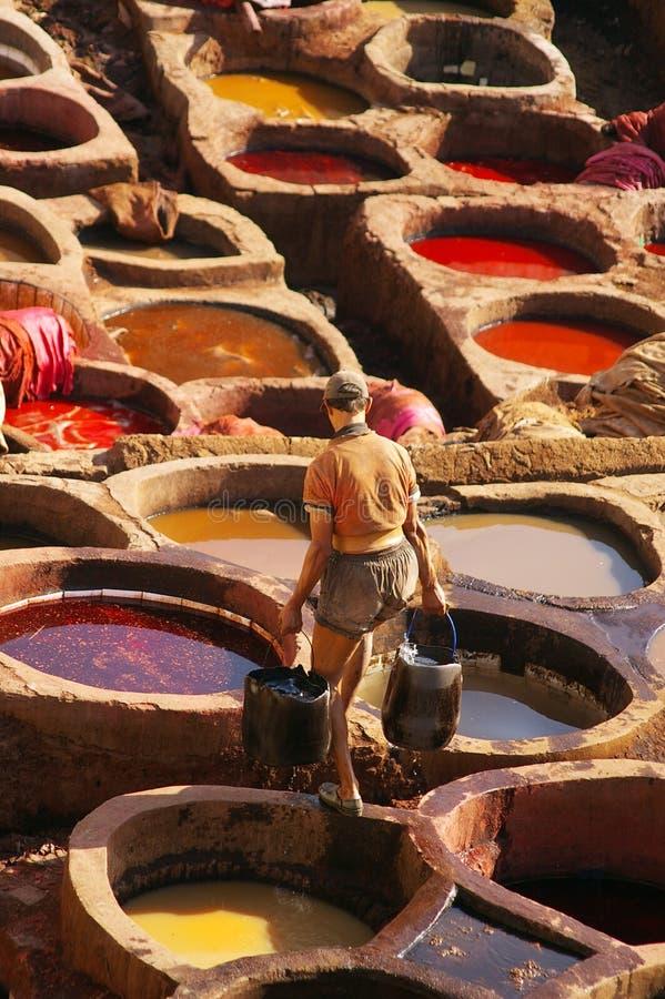 Gerberei in Fez, Morroco stockbild