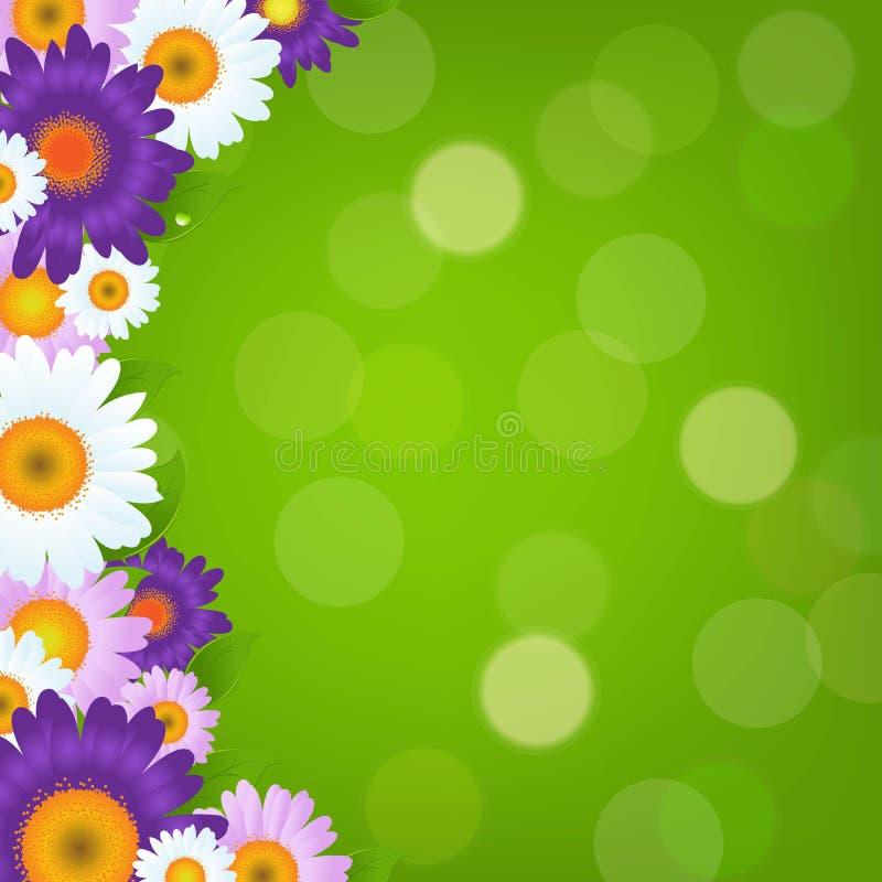 Gerbers colorido florece el marco con Bokeh verde libre illustration