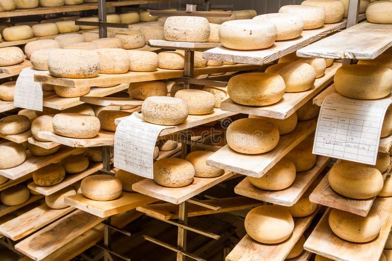 Gereifte Käse, die im Kühlraum liegen stockbilder