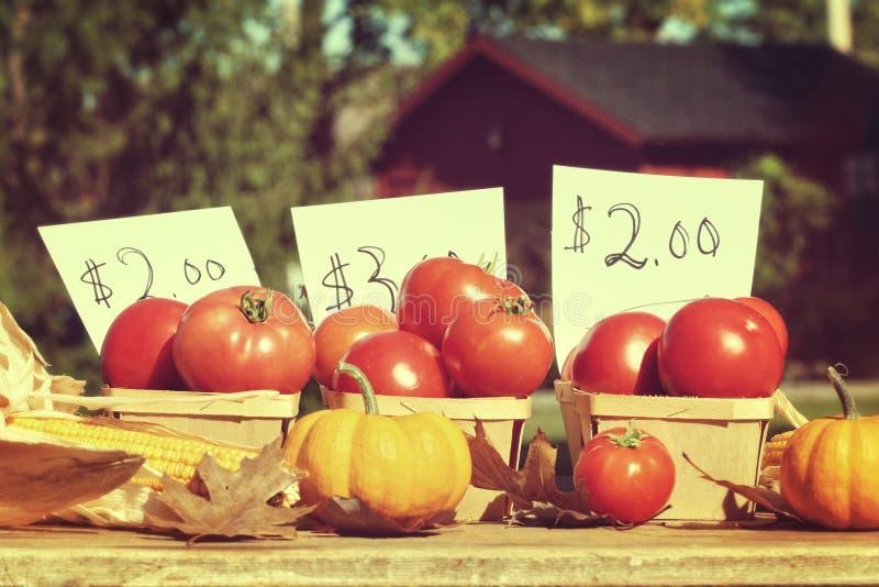 Gereifte Tomaten für Verkauf am Verkaufsstand am Straßenrand lizenzfreie stockfotos