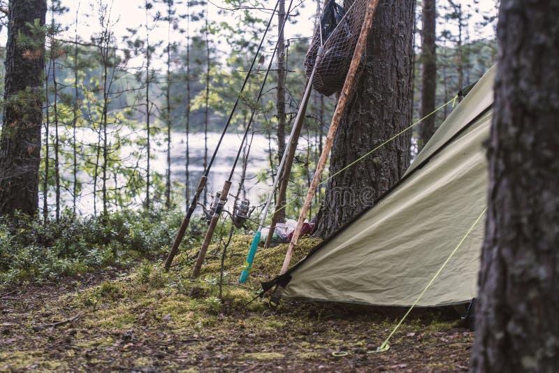 Gerencio, varas de pesca e suporte do equipamento perto de uma barraca, em uma floresta do pinho na costa de um lago foto de stock royalty free