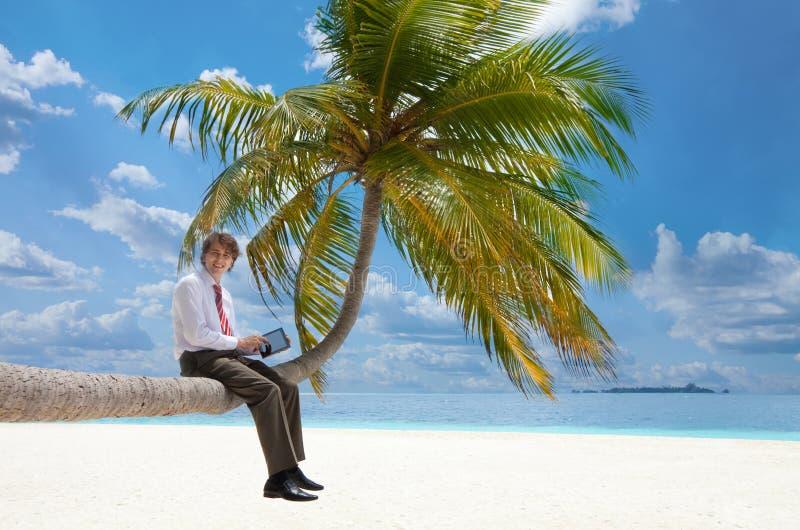 Gerente com o PC da tabuleta que senta-se na palmeira imagens de stock royalty free