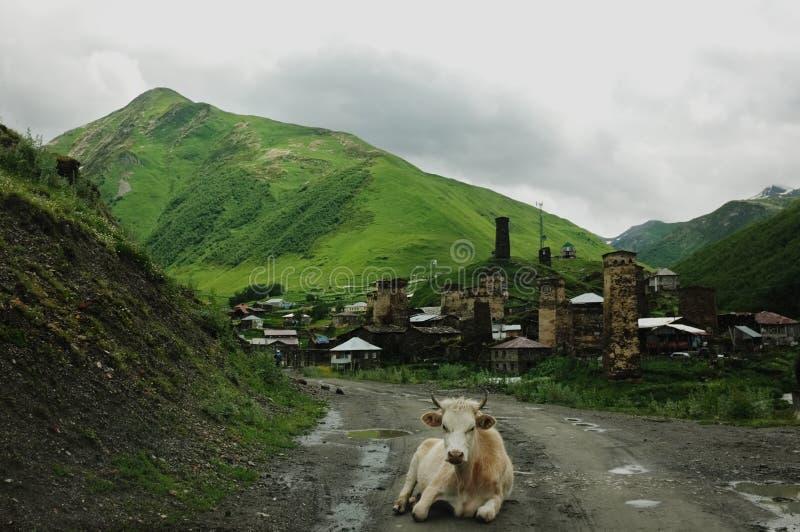 Gergia-Berge stockfotos