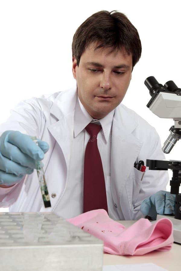 Gerichtlicher Wissenschaftler bei der Arbeit lizenzfreies stockfoto