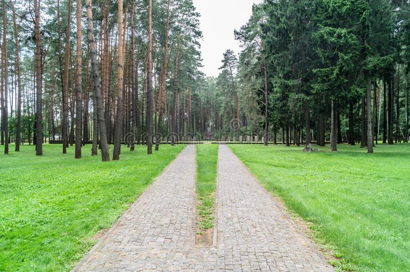 German memorial cemetery near Smolensk in Russia. royalty free stock image