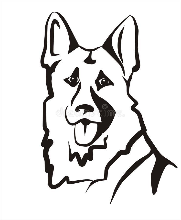 German shepard vector illustration
