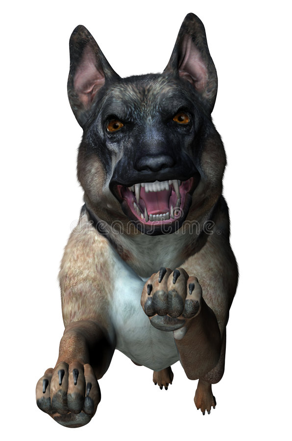 German Shepherd Attacks - includes clipping path vector illustration
