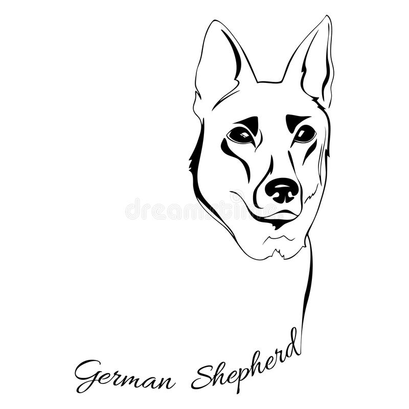 Margot Tenenbaum likewise Stock Illustration German Shepherd Dog Head Outline Drawing Dogs Words Image79249065 together with Latest Drawingart furthermore Spider Coloring Pages in addition Draw Dog. on german shepherd drawings