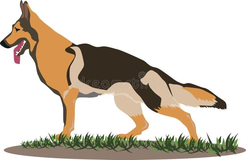 Download German Shepherd Dog Illustration Stock Vector - Illustration: 19415153