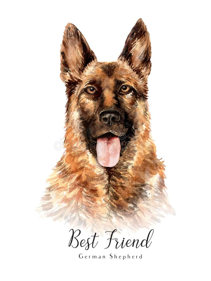 German Shepherd. Portrait of a dog. Set with dogs. Watercolor hand drawn illustration. royalty free illustration