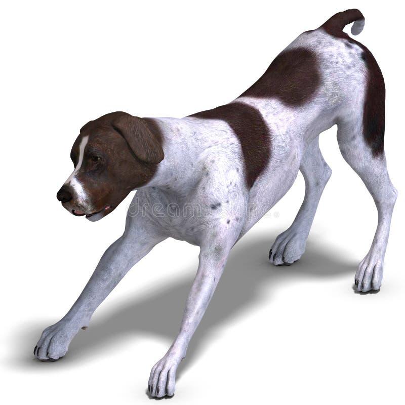 German Short Hair Dog