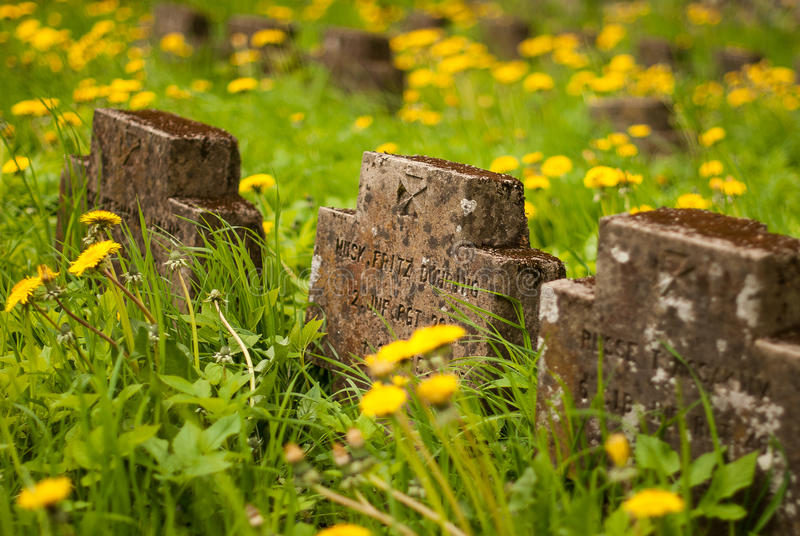 German soldiers cemetery. In Latvia royalty free stock photos