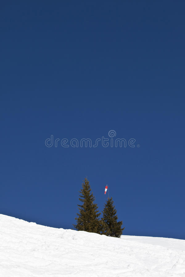 Germany, Bavaria, Snow scape, fir trees under blue sky royalty free stock photo