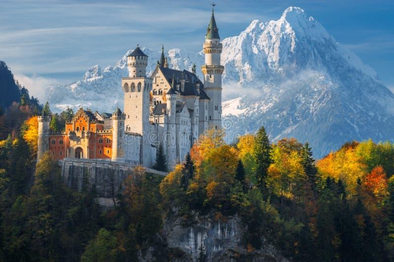 germany Castello famoso del Neuschwanstein nei precedenti delle montagne e degli alberi nevosi con giallo e le foglie verdi immagine stock libera da diritti
