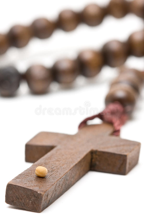 Germen de mostaza - símbolo de la fe foto de archivo