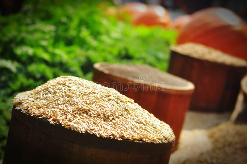 Germen del arroz imagen de archivo libre de regalías