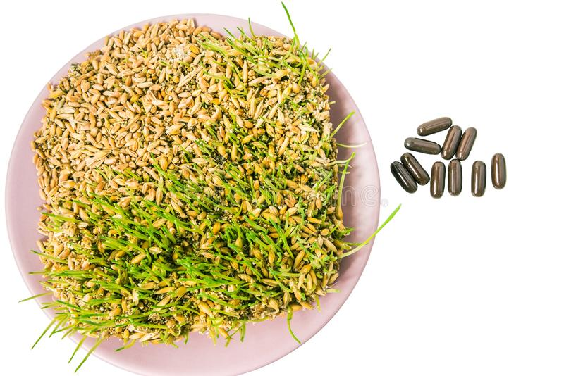 Germinated grains and medicinal capsules stock images