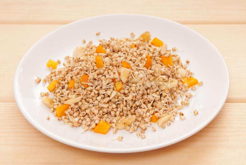 Germinated grains, sprouts of seeds, sprouted buckwheat with ban stock image