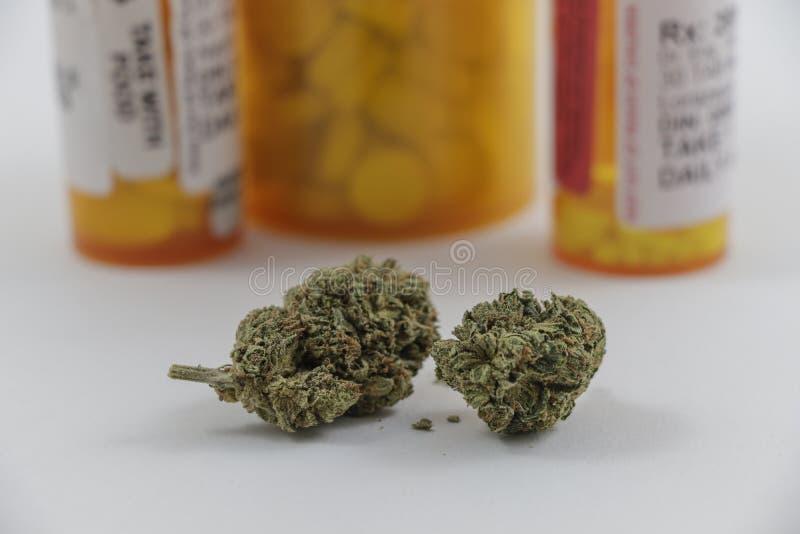 Germogli della marijuana con le bottiglie di pillola dietro immagini stock libere da diritti