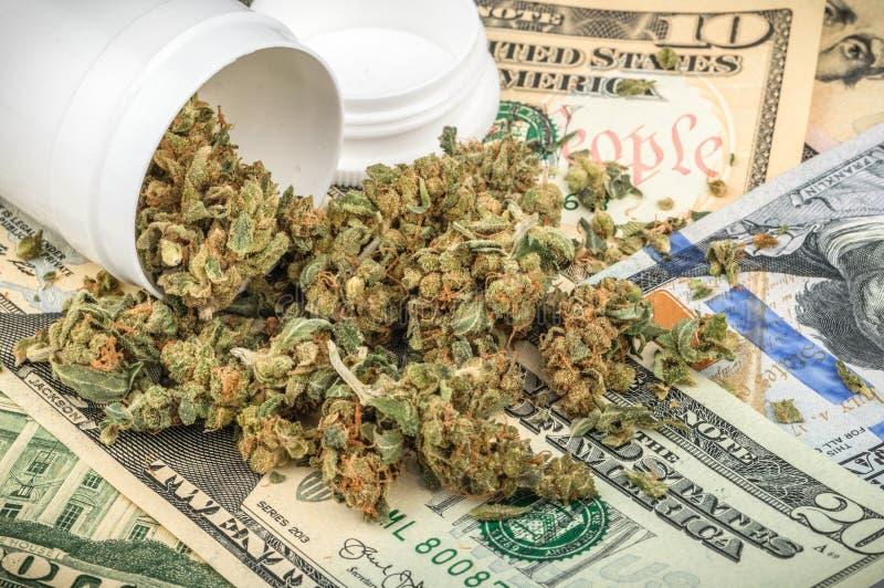 Germogli della marijuana su soldi fotografia stock libera da diritti