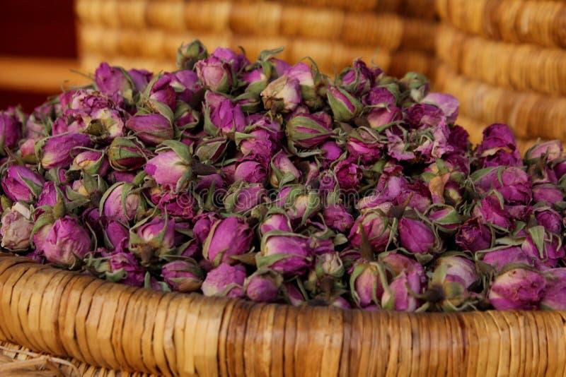 Germogli di Rosa venduti al mercato a Marrakesh fotografia stock