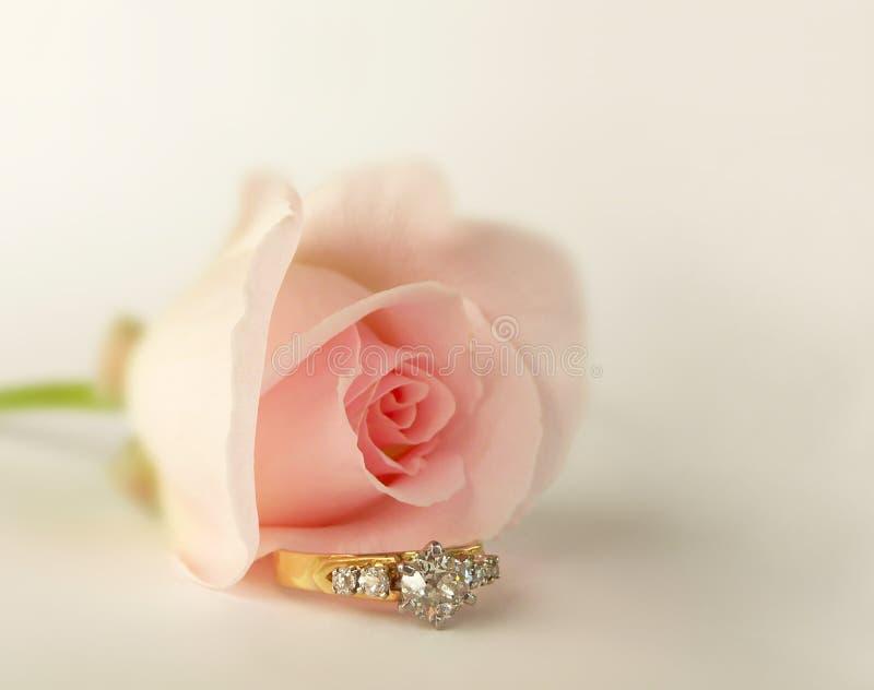 Germoglio della Rosa ed anello di diamante dentellare fotografia stock