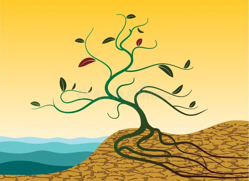 Germoglio in deserto illustrazione vettoriale