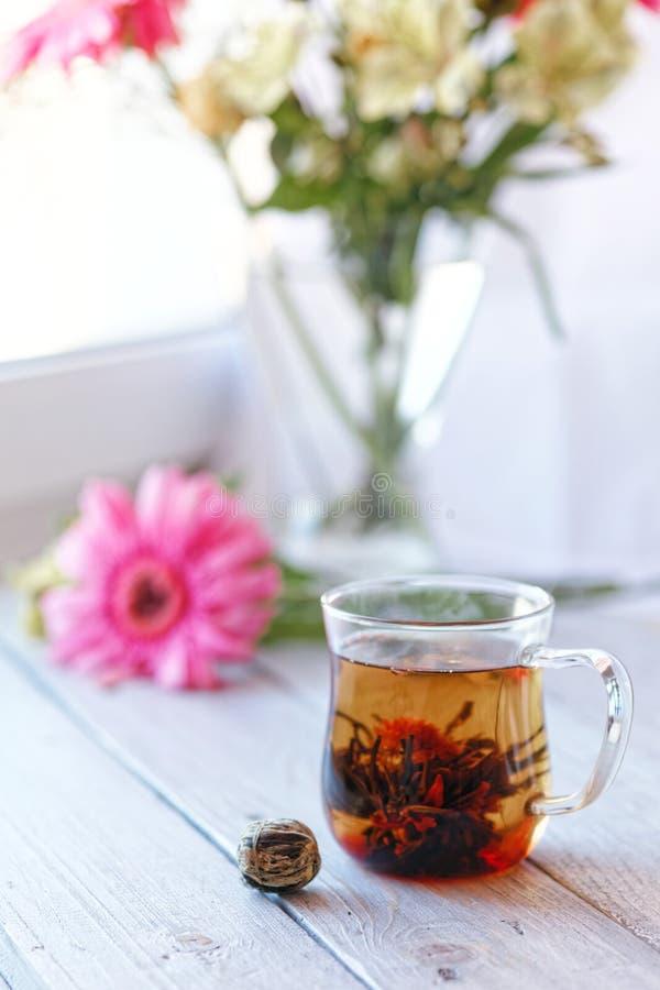 Germoglio di fiore cinese verde del tè che fiorisce in tazza di tè di vetro Profondità di campo bassa della prima colazione di ma immagini stock