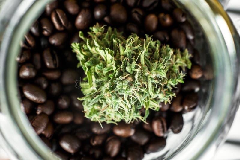 Germoglio di marijuana in un barattolo di vetro fotografie stock libere da diritti