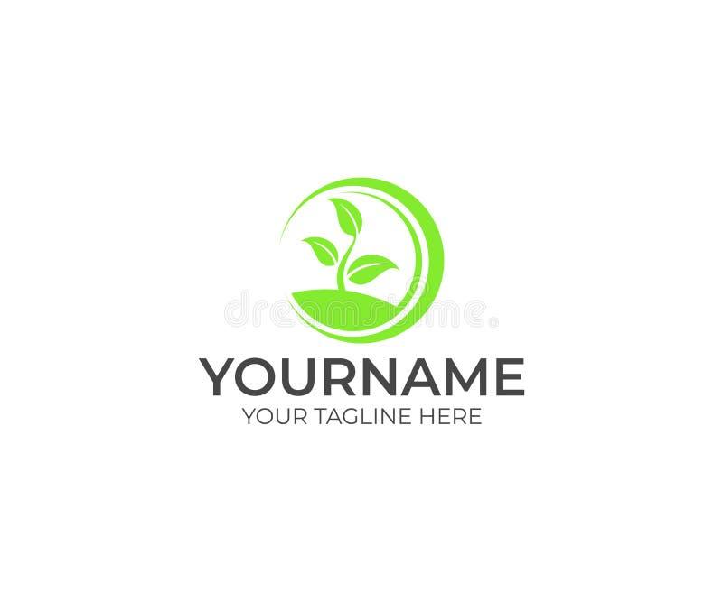 Germoglio verde con le foglie in un modello di logo del cerchio Progettazione di vettore di agricoltura royalty illustrazione gratis