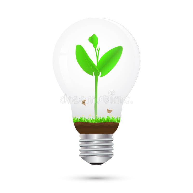 Germoglio verde in lampadina, concetto ambientale illustrazione di stock