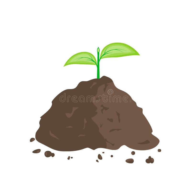 Germoglio verde in mucchio di terra illustrazione di stock