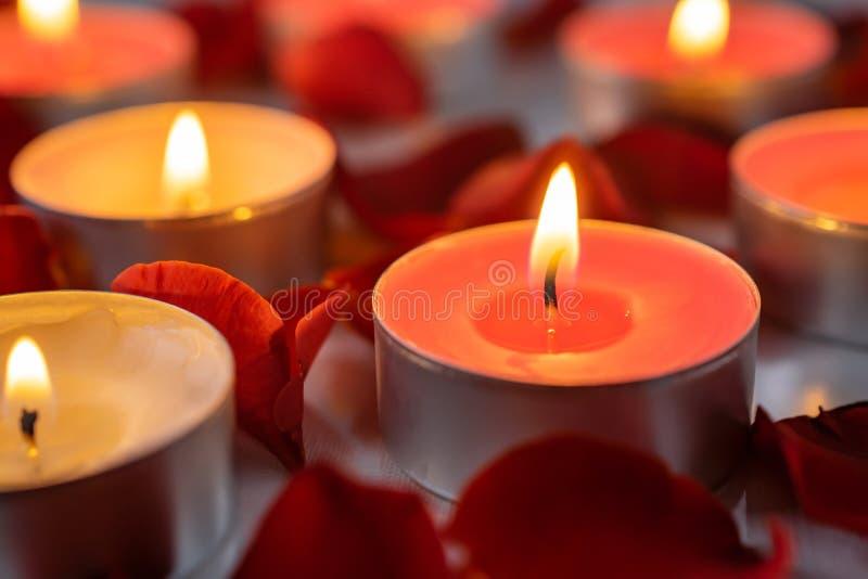 Gerochene Kerzen mit rosafarbenem Blumenblatt-, warmem und gemütlichemhintergrund stockbild