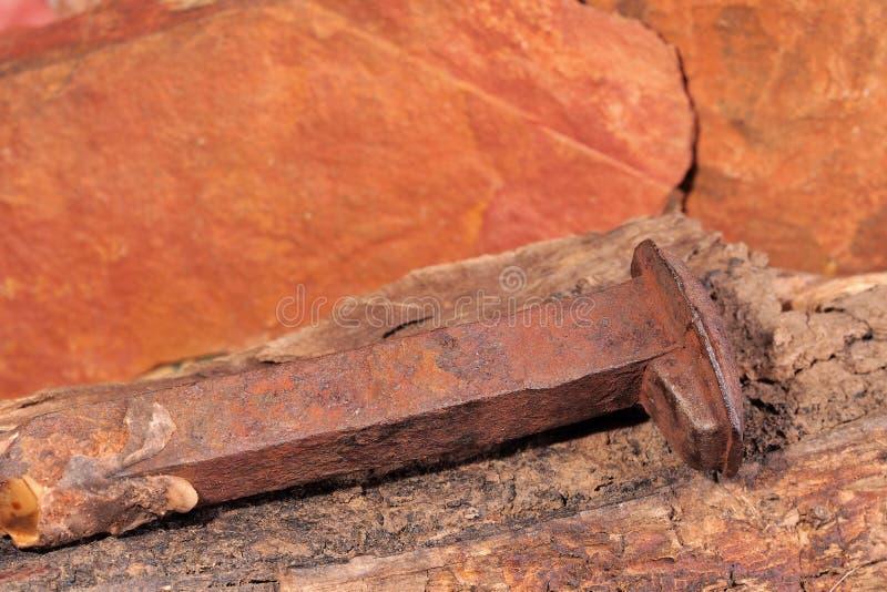 Geroeste spijker van de originele Ghan-spoorlijn op een stuk van rot hout stock foto