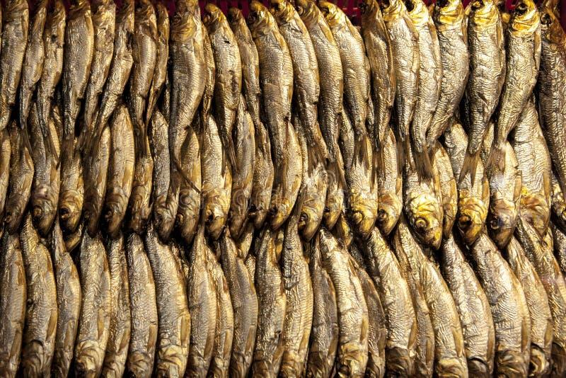 Gerookte Baltische haringen De vissen van Gerookte Baltische Salak stock afbeeldingen
