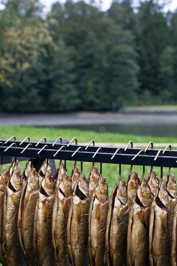 Gerookte bronforel amd fishpond stock afbeeldingen